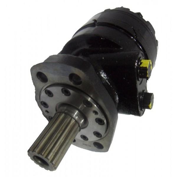 Moteur hydraulique 250 CC/REV 25 mm parallèle Keyed Arbre C/W haute pression Seal #1 image