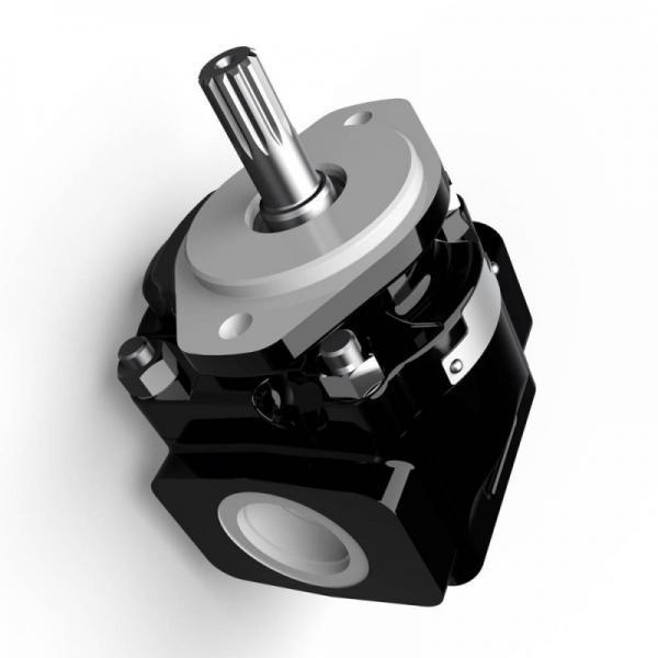 Genuine PARKER/JCB 3CX double pompe hydraulique 20/925341 41 + 26cc/rev MADE in EU #1 image