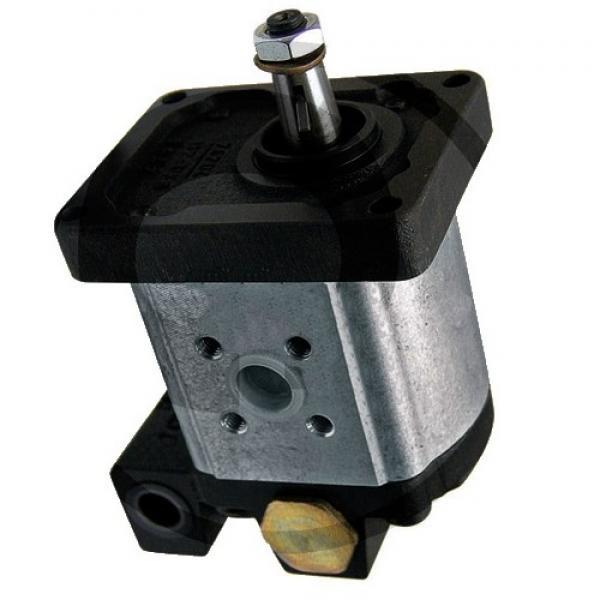 Hydraulique pompe à engrenages BOSCH REXROTH 0 510 415 005 #1 image