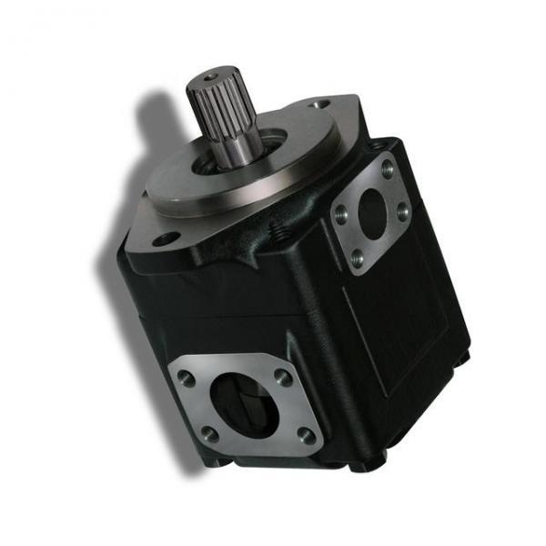 Genuine PARKER/JCB 3CX double pompe hydraulique 20/925338 33 + 23cc/rev MADE in EU #3 image