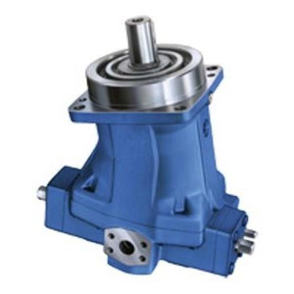 BOSCH REXROTH hydraulic axial piston fixed pump A17FO023/10NLWK0E81-0 R902162388 #1 image