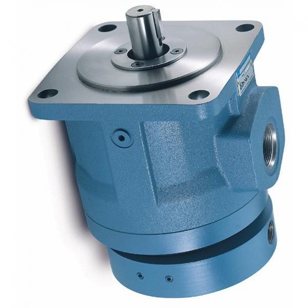 Nessie Danfoss PAH 80 haute pression robinet pompe à eau, technique de l'eau, à pistons axiaux #1 image