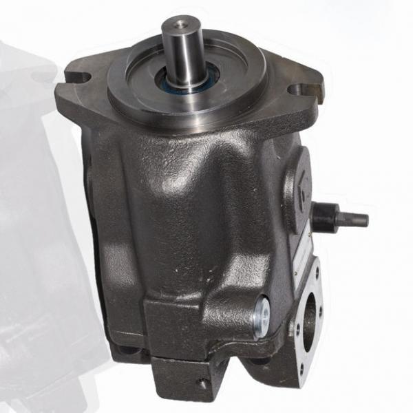 Pompe hydraulique à pied doubles pistons #1 image