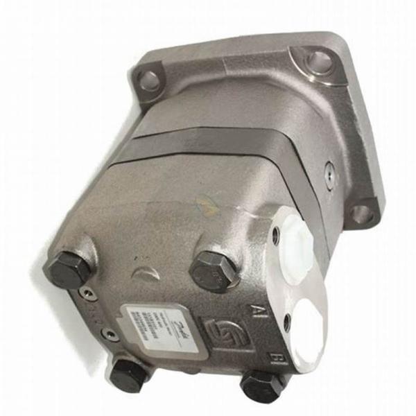 ADAN Heavy Duty 300cc moteur hydraulique. pas M + S, Eaton. Danfoss OMT substitut #1 image