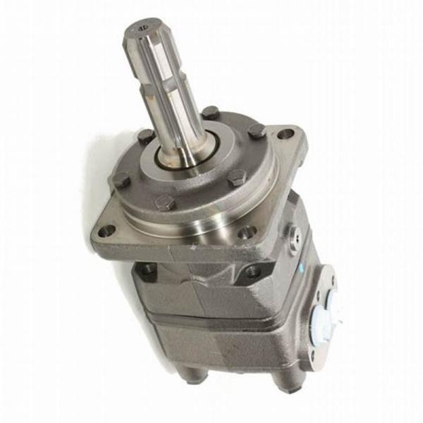 M + S MR315CB moteur hydraulique 315CC (Danfoss OMR de remplacement) 32 mm Arbre-EMRP 315 C #1 image