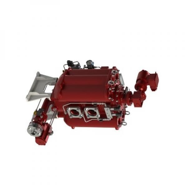 Filtre Hydraulique Avec Poignée Poignée Remplacement Hydac 240R020BNHC #1 image