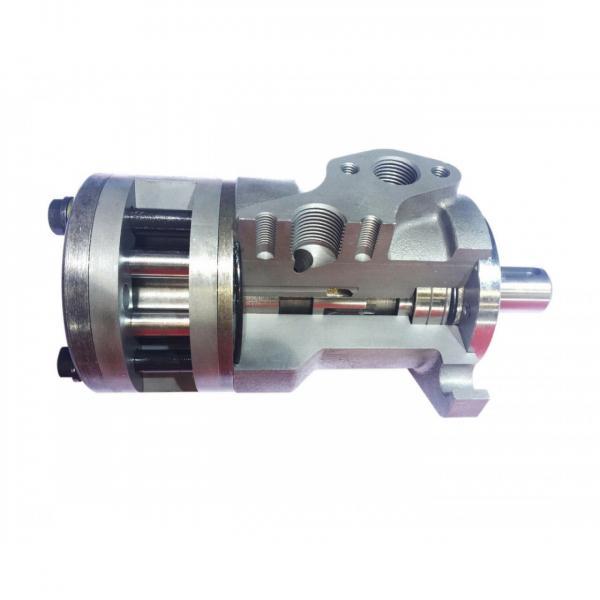 Flowfit Hydraulique Moteur 200 Cc / Rev 25mm Parallèle à Clé Arbre C/W S #3 image