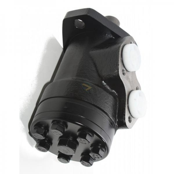 Hydraulique orbital moteur type OMP OMR SMR BMR 200 Type DANFOSS Arbre 25 mm geroto #2 image