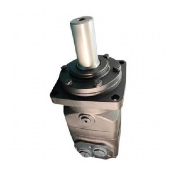 Flowfit Double Croix Relief Valve flangeable sur Danfoss Motors par vis, 50-200 B #2 image